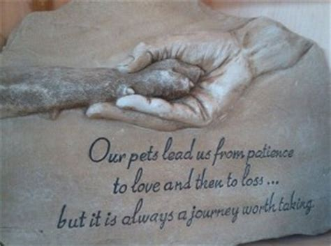 quotes about dogs dying pets dying inspirational quotes quotesgram