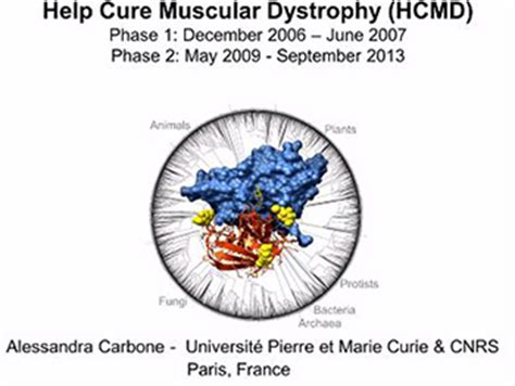 pattern dystrophy cure data from help cure muscular dystrophy project used to