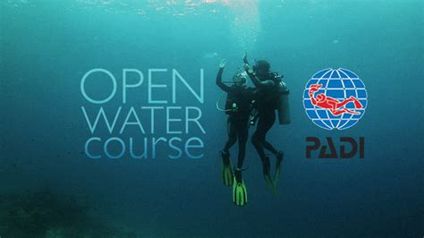Freediving Open Water Course open water diver alpha divers