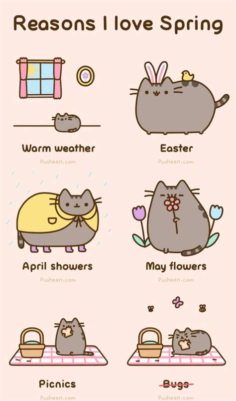 8 Reasons I Animals reasons i pusheen animals and