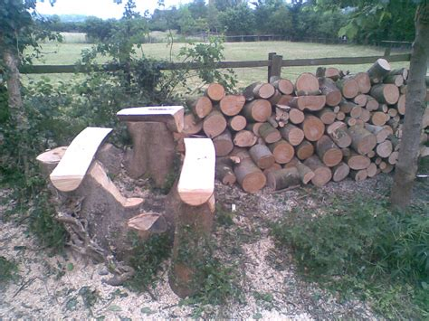 stump bench greenshave carved seats