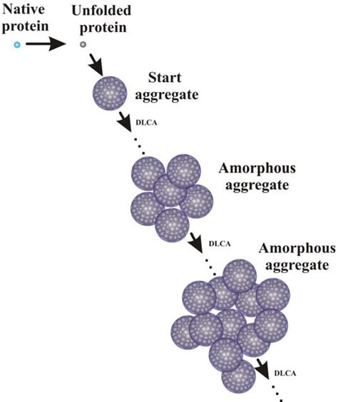 protein aggregation ijms free text mechanism of suppression of