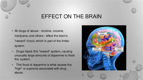 Effects Of Detox On The Brain by Addiction