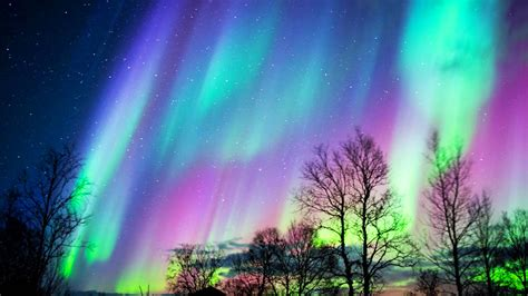 where can i go see lights see the northern lights before they go dim