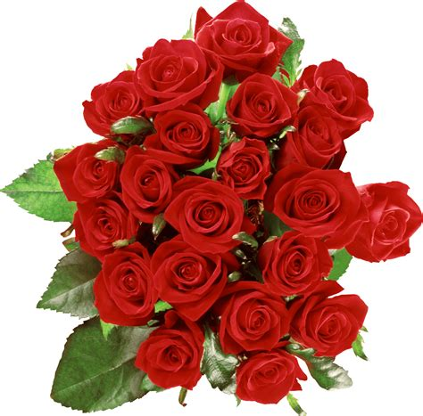 Bouquet Of Roses by Bouquet Of Roses Transparent Png Stickpng