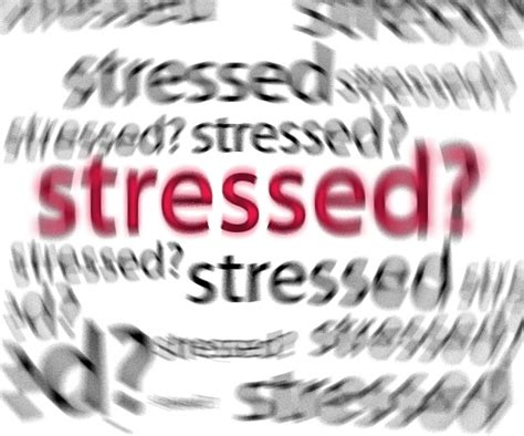 Don T Take Your Stress Out On Your Husband - how to mange your stress so it doesn t take complete