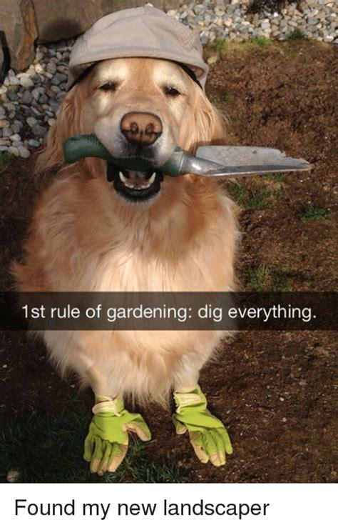 Landscaping Memes - 25 best memes about landscapers landscapers memes