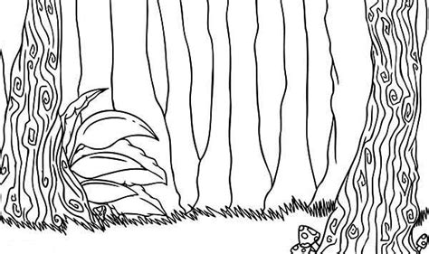 rainforest leaves coloring page leaves coloring pages leaf templates kids line drawings