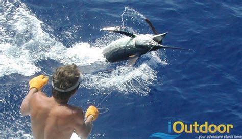 key west boat dealers in central florida deep sea fishing 10 outdoor adventures for fishing