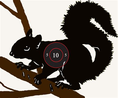 printable shooting targets squirrel image gallery squirrel targets