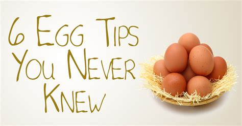 the health benefits of organic eggs the health benefits of organic eggs