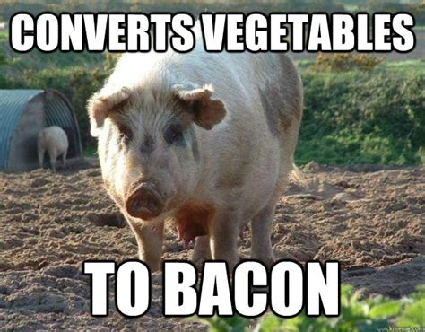 Vegetable Meme - converts vegetables to bacon misc quickmeme