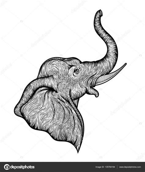 Tete Elephant Profil by T 234 Te D 233 L 233 Phant Dans La Conception De Profil Ligne