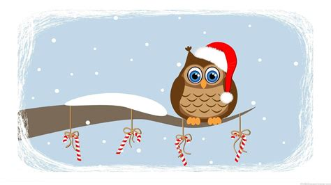 wallpaper christmas owl owl animation cliparts co