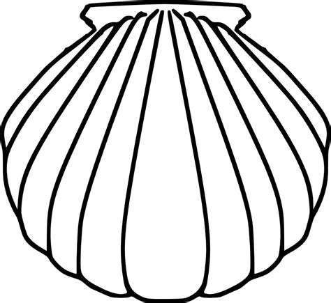 seashell template seashell template clipart best