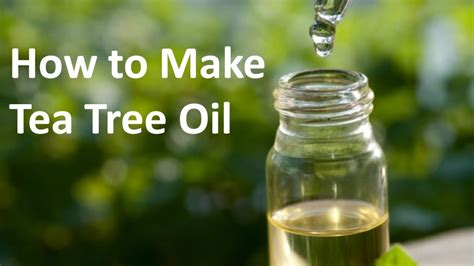 How To Make A by How To Make Tea Tree