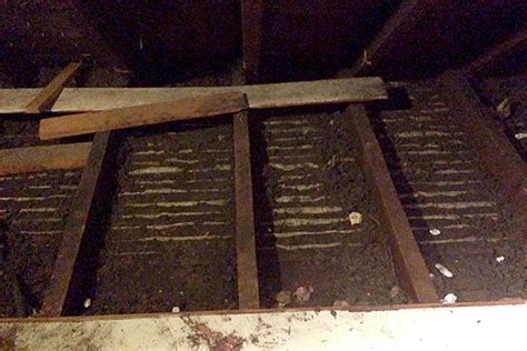 Attic Cleaning Near Me - kitchen demo continues attic cleaning part 2 avoision