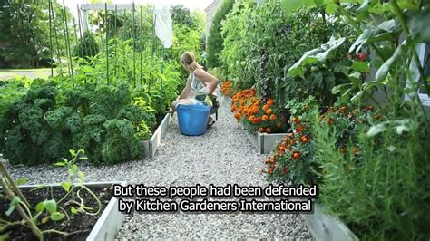 drummondville s front yard vegetable garden youtube