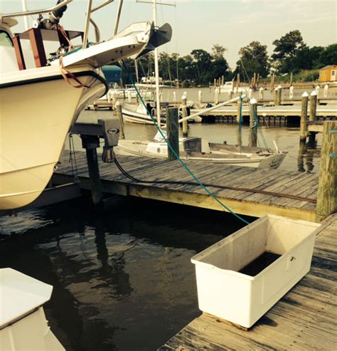 boat dock supplies new diy boat this how to build a lightweight boat dock