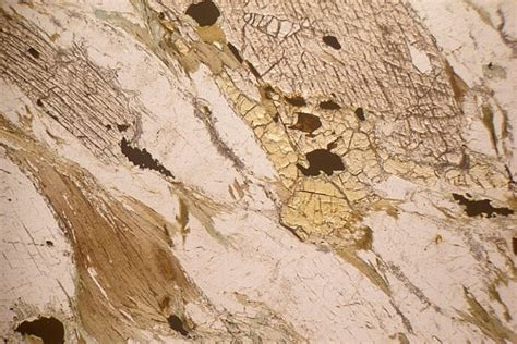 staurolite thin section staurolite kyanite gneiss glenelg inlier scotland thin