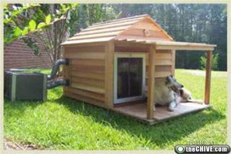 bad dog house image joke