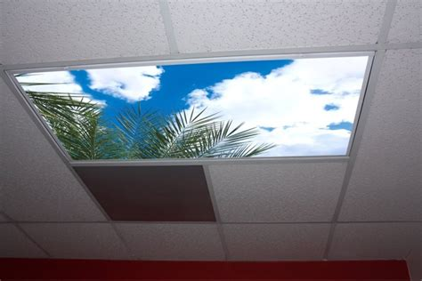 fluorescent lights decorative light panels sky panels images gallery skypanels turn your ceiling light panels into an image of