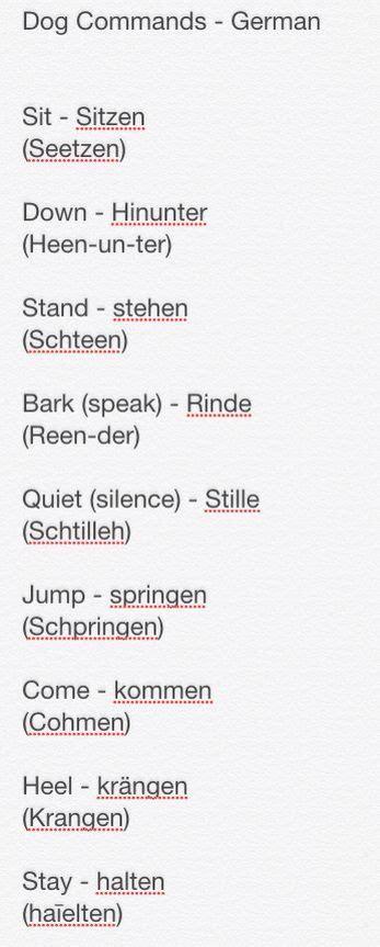 german commands 1000 ideas about german shepherd pups on german pet safe melt