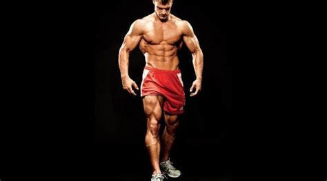 the best leg building workout program fitness