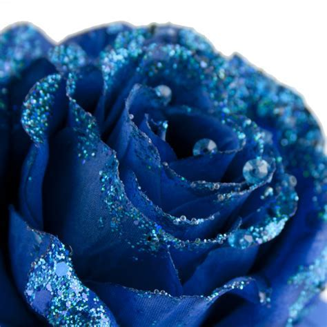 Cobalt Blue Silk Sparkle Rose Clip   14cm   Decorations