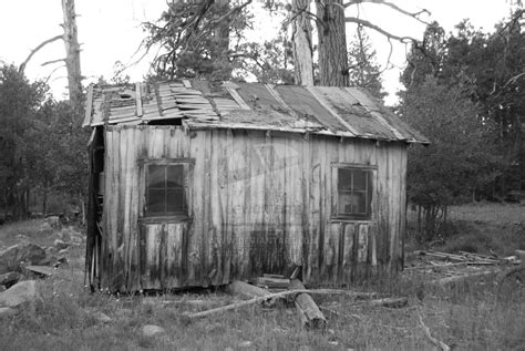 scary cabin 1 black and white by hibiansview on