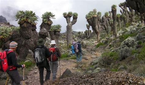 trekking mount kilimanjaro packing list her packing list kilimanjaro packing list for trekking cing or huts