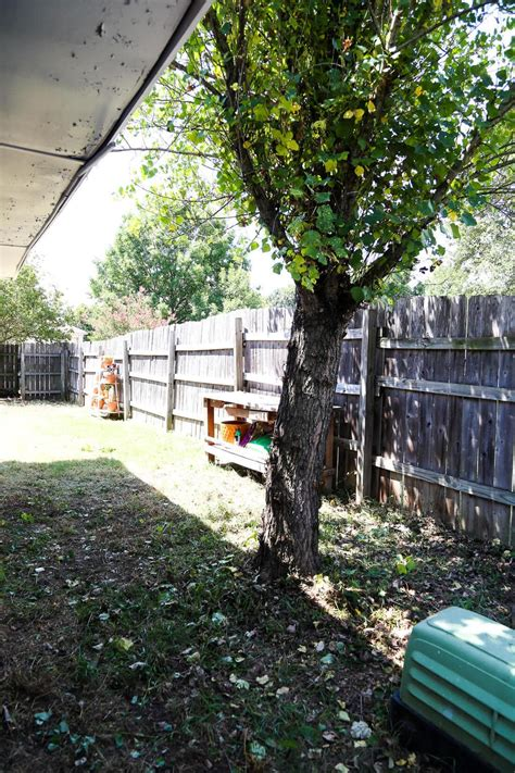 clean backyard a quick backyard clean up with ryobi love renovations