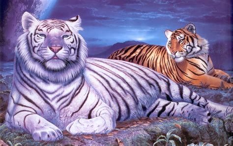 anime wallpaper tiger white tiger wallpaper free hd wallpaper