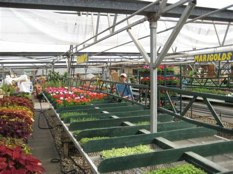 Lowes Garden Center Sales by Lowe S Greenhouses 2010 Minot Flower Delivery Lowe S