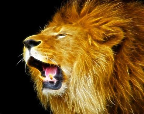 imagenes de leones fantasia dibujo de la cara de un le 243 n que parece de fuego imagen