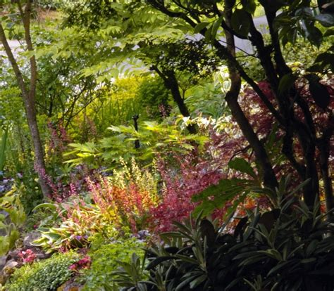 Plants For Shade Gardens by Shade Perennials What To Grow Trees Journal