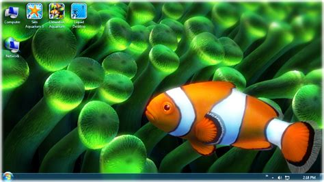 live wallpaper for pc windows 8 1 clownfish aquarium live wallpaper download