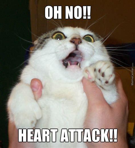 Heart Attack Meme - heart attack cat by trans4mers434 meme center