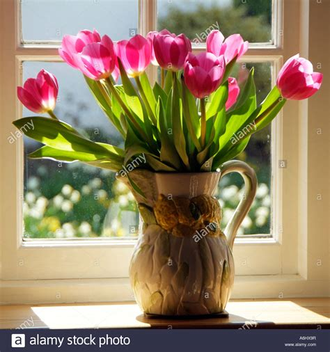 flowers in a vase tulips in a vase on windowsill or window ledge
