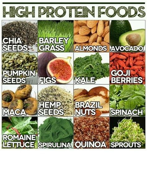 0 protein snacks high protein snacks truffles treadmills