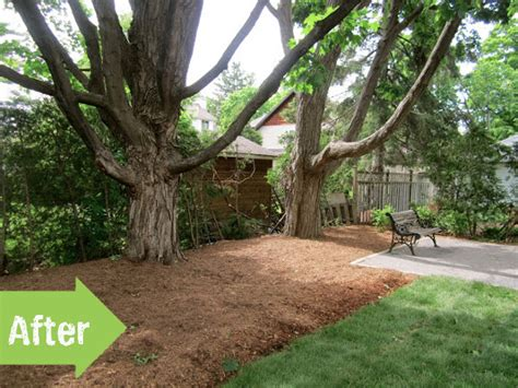 low budget backyard makeover before after a backyard ventures from chaos to calm