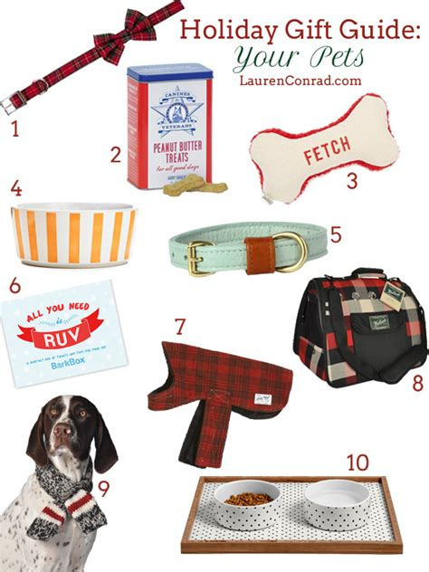 holiday gift guide for your pets lauren conrad