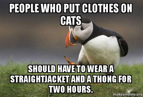 Thong Meme - people who put clothes on cats should have to wear a