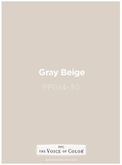 beige the color best 20 gray beige paint ideas on