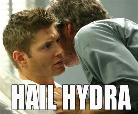Hail Meme - the most hilarious hail hydra memes you can try that