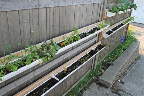 Gardening Keywords Gutter Vegetable Garden Similiar Gutter