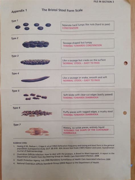 Stool Form by Bristol Stool Form Scale What S Wrong With Your Poo Musely