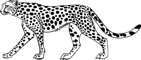 cheetah head coloring page cheetah coloring pages animal coloring pages colorin