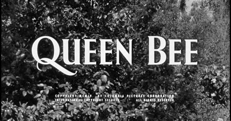 queen bee film 1955 dreams are what le cinema is for queen bee 1955