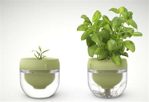 the smart garden droponic is a smart garden that lets you grow food in even